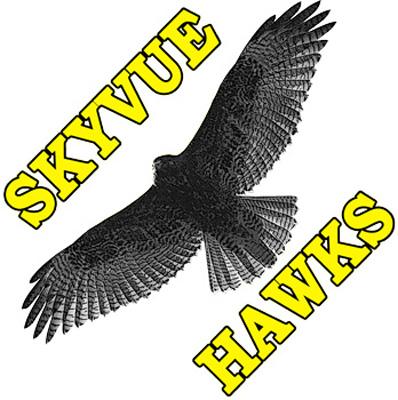 Skyvue_400.jpg