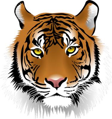 StM-Tiger_400.jpg